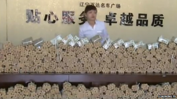 women with many coins and notes